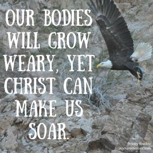 strength-renewed